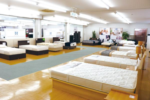 bed-fair-main